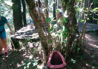 Izdelali smo si žogice in naredili veliko gozdno tekmovanje