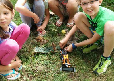 Naredili smo gozd iz ''gozdu''